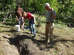 permaculture orchard design